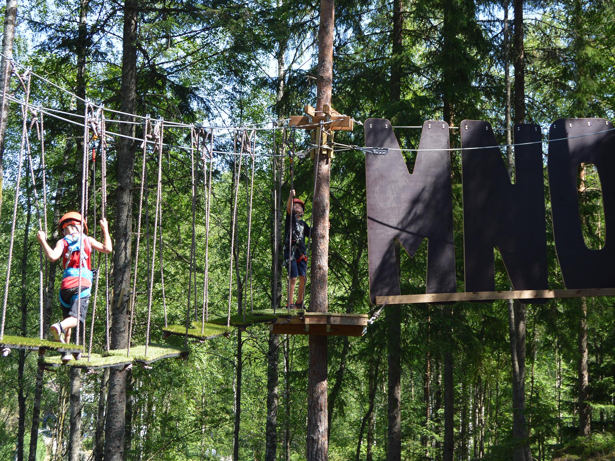 Borås Trädklättring